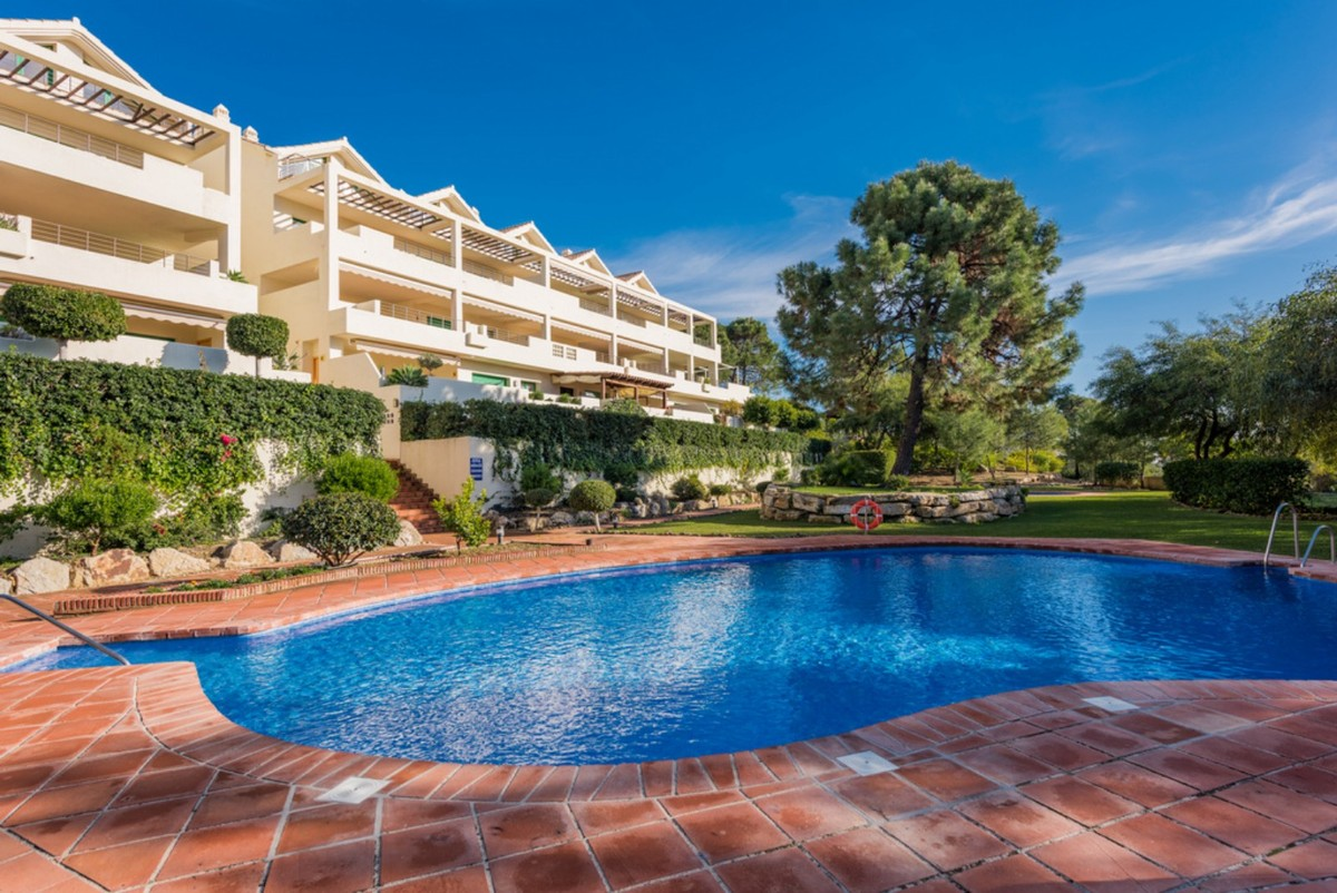 Apartments in Selwo, Estepona